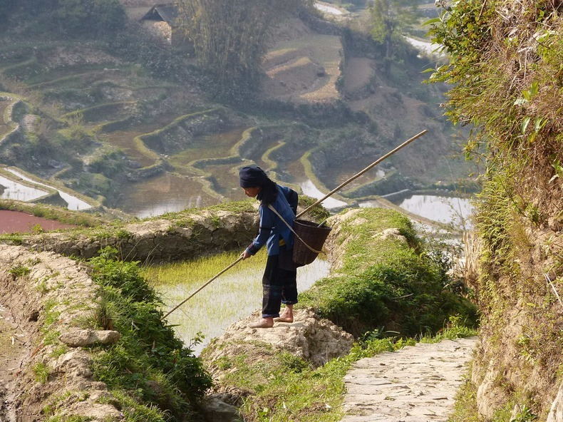 yunnan-rice-terraces-5