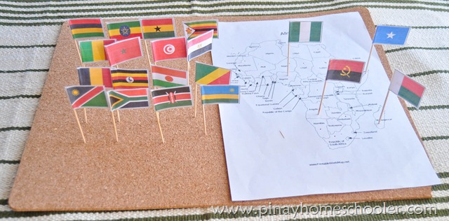 Africa Continent Flags