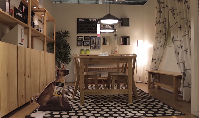 IKEA and Dogs 01