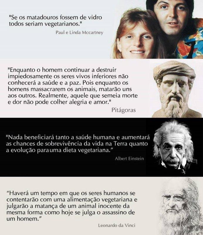 Da Vinci Frases 7 Quotes Links