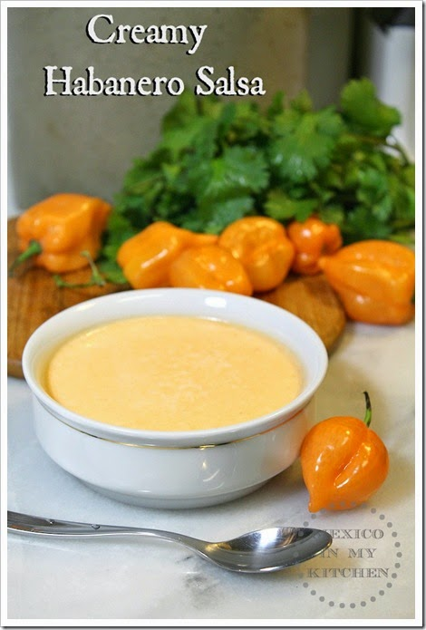 Creamy Habanero Salsa | easy and with excellent results
