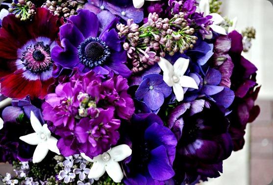 DSC_0383  courtenay lambert florals