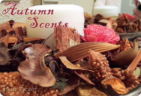 Autumn_Scents