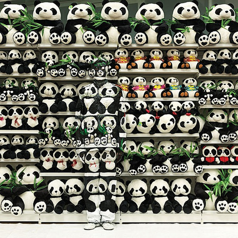 Liu Bolin Disappears Again