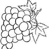normal_64-coloriage_fruit.jpg