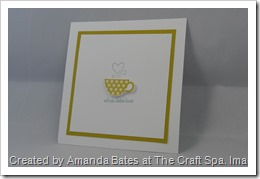 Patterned Occasions, The Craft Spa, SAB 2013, Stampin Up, SU (5)