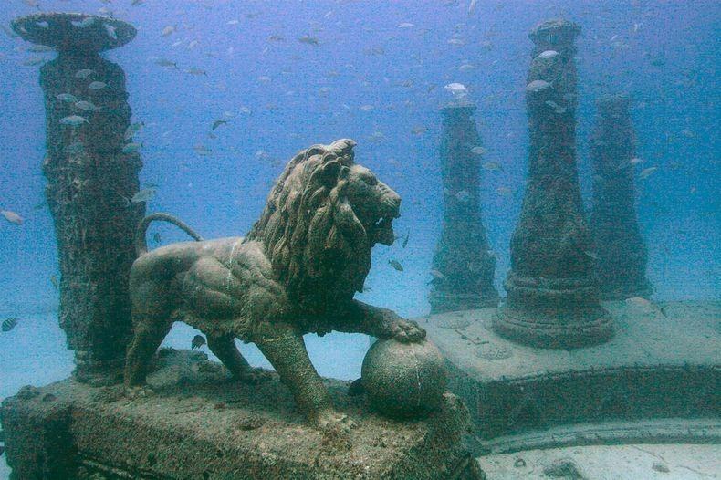 neptune memorial reef an underwater cemetery amusing planet