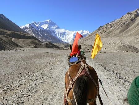 21. Cu caruta spre Everest.JPG