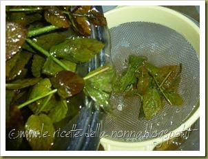 Bevanda fresca alla menta piperita (4)