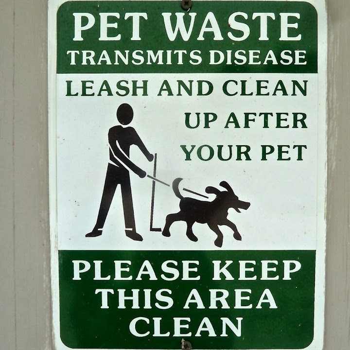 Leash and clean up after