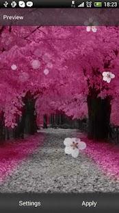 Sakura Live Wallpaper 3.1,بوابة 2013 -YN-JjolMzmeVueWt7ly