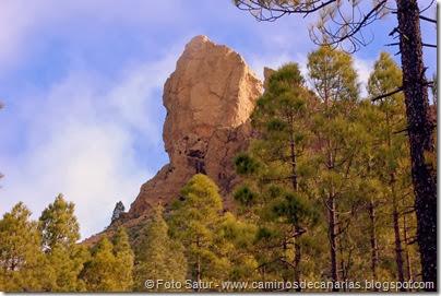 7501 La Goleta-Tejeda(Roque Nublo)