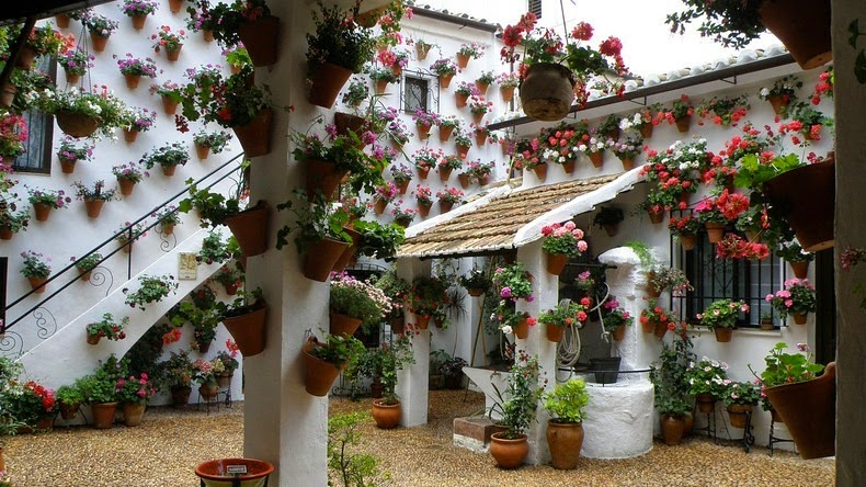 The flower laden patios festival of cordoba amusing planet - Fotos patio andaluz ...