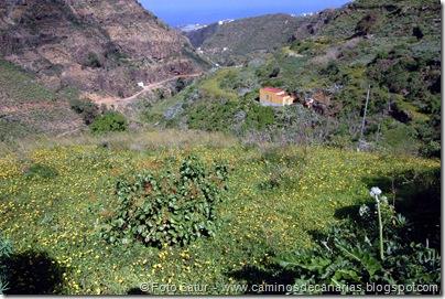 4953 Montaña Alta-Guía