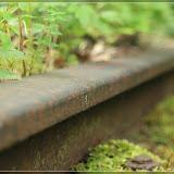 rostige Gleise