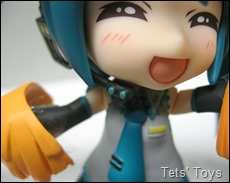 Support Nendoroid Miku