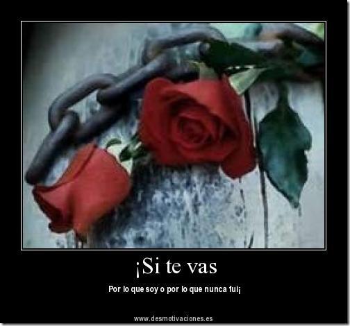 Imagen Con Frase De Despedidas Frases Amor