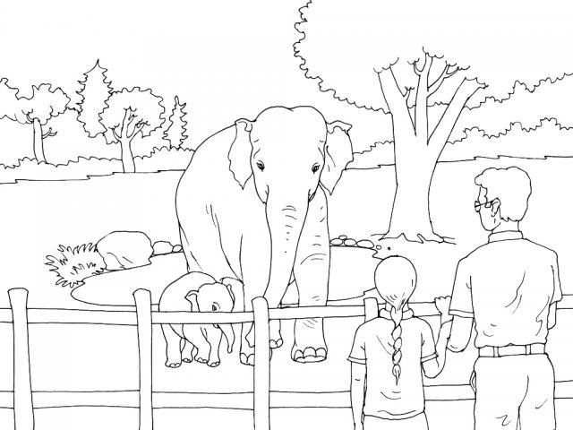Animals In The Zoo Coloring