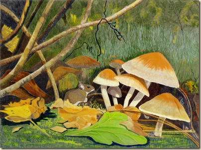 mushrooms110 (2)