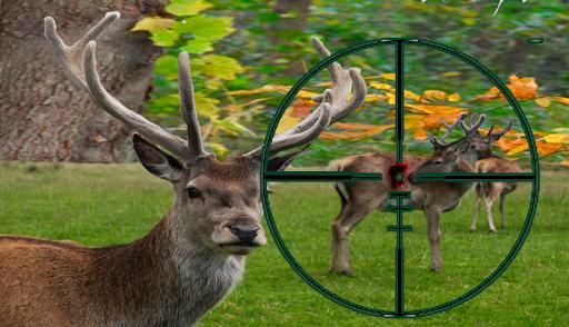 Sniper Deer Hunting 2015