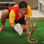 Тайланд 17.05.2012 6-29-50.JPG