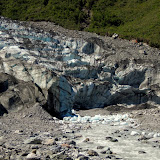 South Island - Fox Glacier