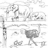 animaatjes-dierentuin-23134.jpg