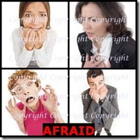 AFRAID- 4 Pics 1 Word Answers 3 Letters
