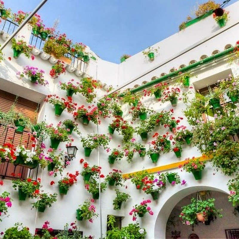 The Flower Laden Patios Festival of Cordoba