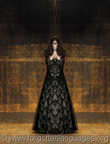 dramatic_illusion_black_lace_wedding_dress_211947_20110912204919