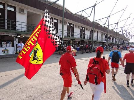 05. Fani Ferrari.JPG