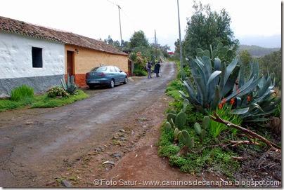 7361 La Laguna-Barranco Laurel(Los Tiles)
