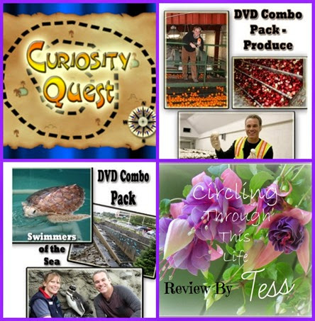 Curiosity Quest Review by Tess www.circlingthroughthislife.com