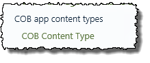Provisioned content type