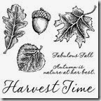C1504_fall harvest stamp set
