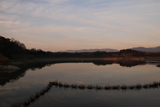 左岸よりダム湖と日野川脇ダムを望む