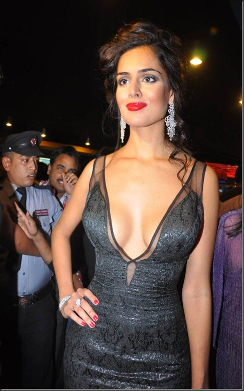 Nathalia Kaur Spicy Hot Pics