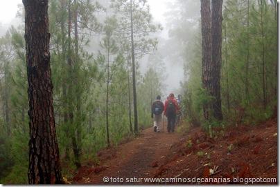 4330 Deg.Humo-Lugarejo-Tamadaba