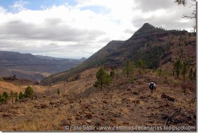 6937 Chira-Cruz Grande(Montaña Alta)