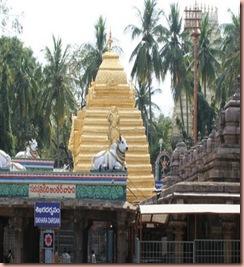 Lord mallikAarjun temple5