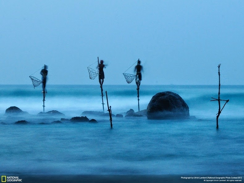 stilt-fishermen-sri-lanka-10