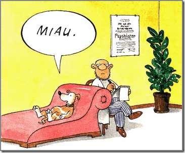 sicologo siquiatra (4)