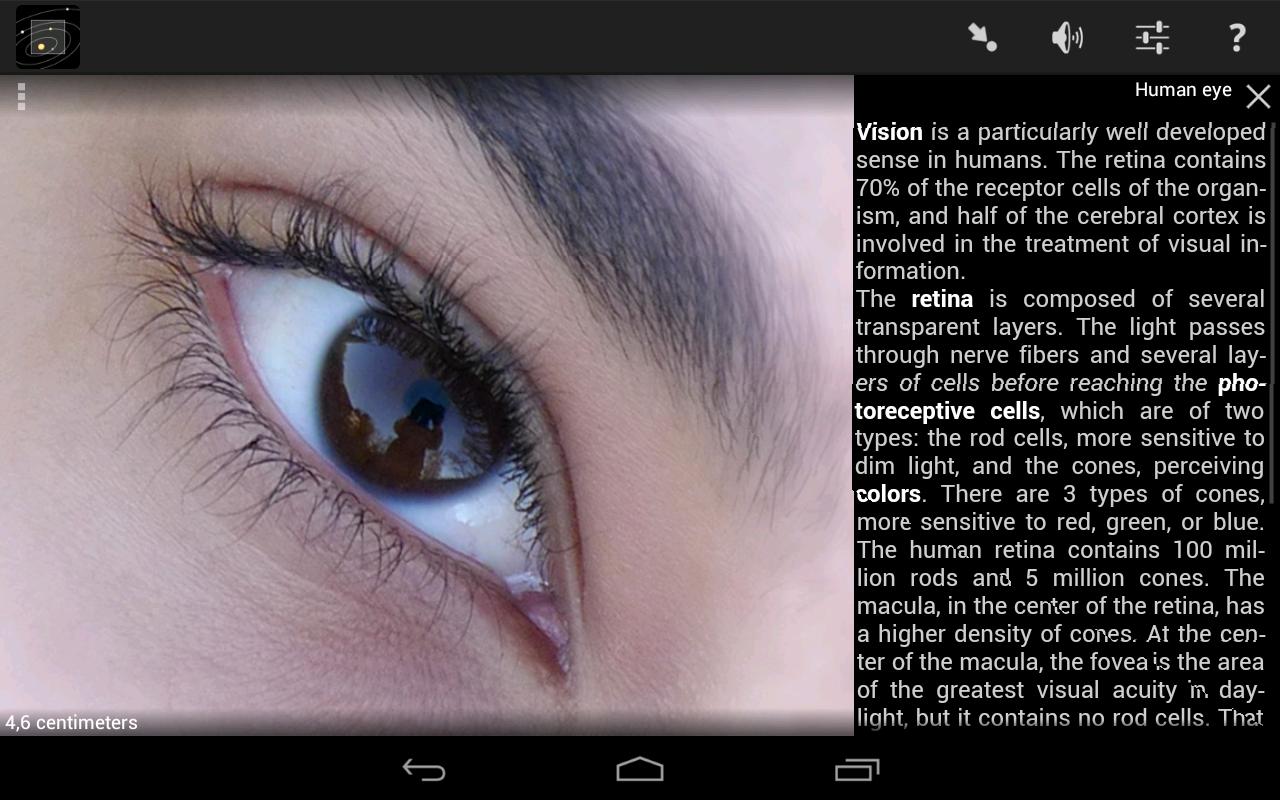 Cozmic Zoom Lite screenshot #8