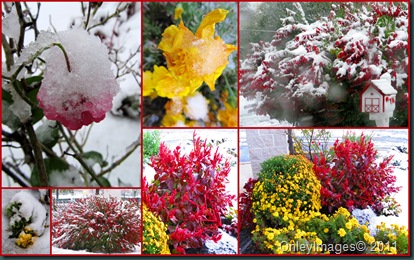 PA snow collage2