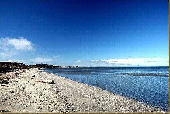 Farewell Spit Beach 2