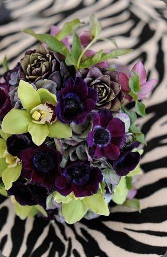 1107 the flower studio az