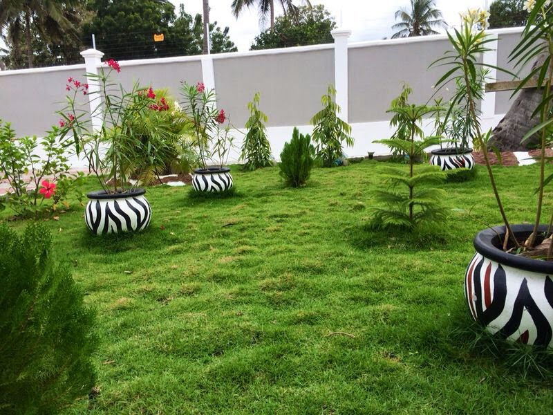 Ujenzi zone nyumba kali zinazorock ujenzi zone for Garden design za