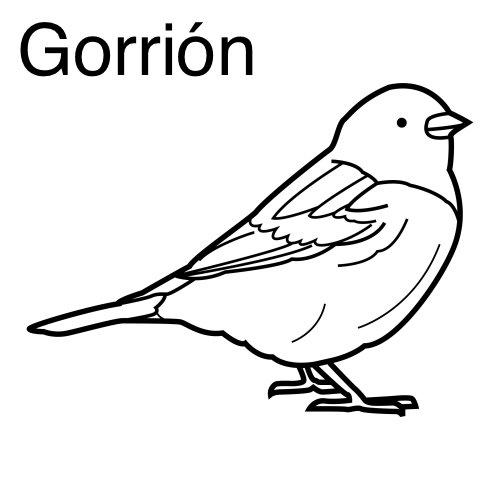GORRION COLOREAR DIBUJO