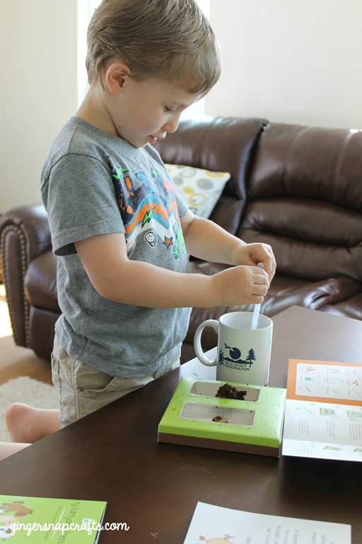 #kiwisummerfun seed activity for kids