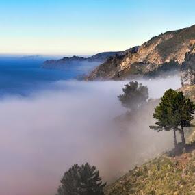 Fog creeping in! by Dorothy Valine Gram - Uncategorized All Uncategorized ( central ca coast, , Earth, Light, Landscapes, Views )